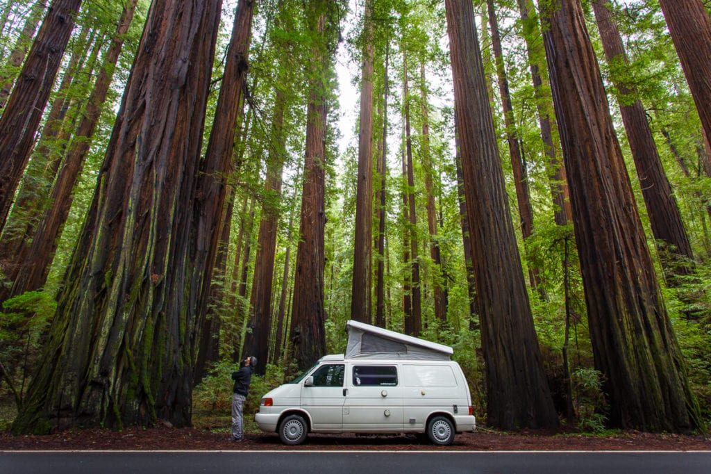 Campervan in the redwoods